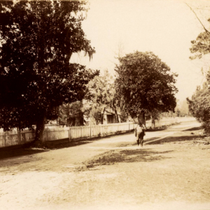 Shell Road - unidentified man standing along.jpg